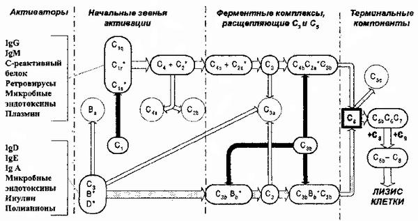 Схема активации системы